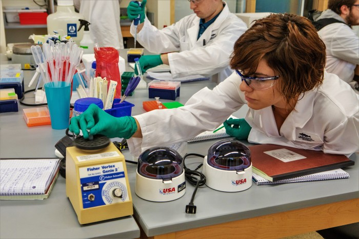 sm extracting DNA -1638