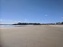kites Long Beach near Cape Ann Motor Inn Gloucester MA_20200912_©c ryan (2)