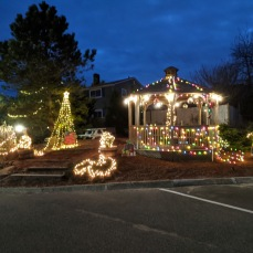 Cape Ann Motor Inn goes Grinch views day and night_2020 Nov 25th_Gloucester Mass. photo copyright © catherine ryan
