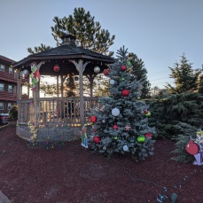 Cape Ann Motor Inn goes Grinch views day and night_2020 Nov 27th_Gloucester Mass. photo copyright © catherine ryan
