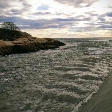 November 16 2020 Long Beach Saratoga Creek ©c ryan