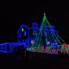 Reynard Street_2020 Nov 29th_Gloucester Mass._ photo copyright catherine ryan (5)
