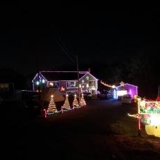 Spruce Road_2020 Nov 29th_Gloucester Mass._ photo copyright catherine ryan