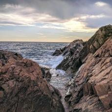 Thanksgiving colors coastal rocks_November 20 2020 _Gloucester Mass little chasm ©c ryan