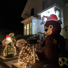 Warner Street teddy bear_2020 Nov 19_Gloucester Mass. photo copyright catherine ryan