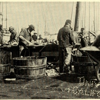 CLARENCE MANNING FALT photo_ illustrate his 1902 book poetry Wharf Fleet_Univ Ca (4)
