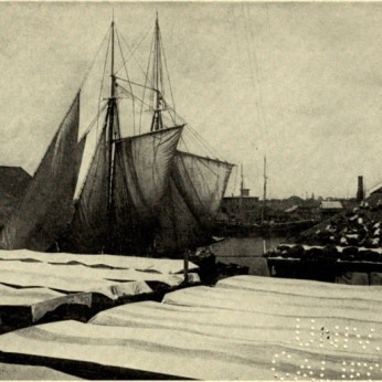 CLARENCE MANNING FALT photo_ illustrate his 1902 book poetry Wharf Fleet_Univ Ca (8)