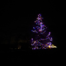 Essex Avenue_2020 Dec 2_Christmas Lights Gloucester Massachusetts photo copyright C. Ryan (4)