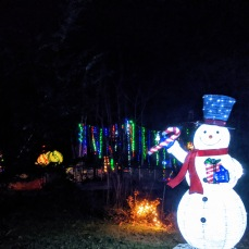 Essex Avenue_2020 Dec 2_Christmas Lights Gloucester Massachusetts photo copyright C. Ryan (9)