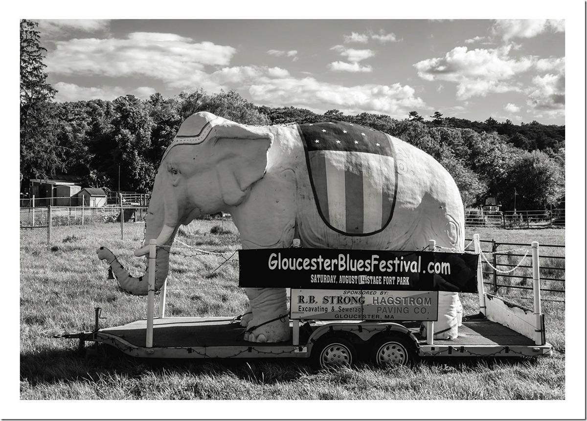 Gloucester Blues Festival Sign