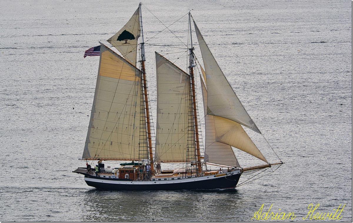 schooner F